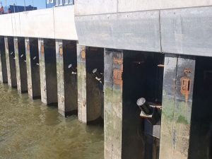 Kaimauer in Wilhelmshaven am Helgolandkai: vorher